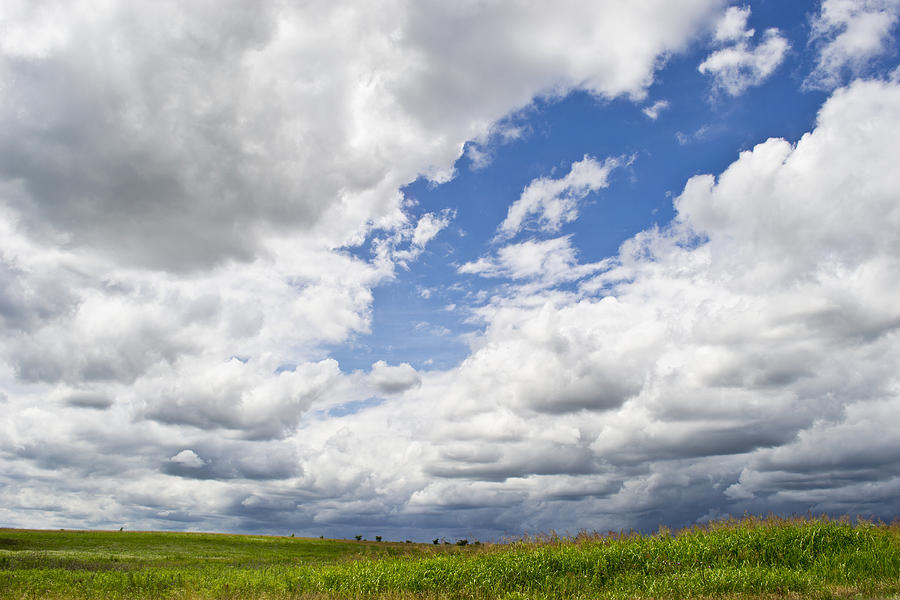Clouds Photograph - A Cloudy Day by Lisa Plymell