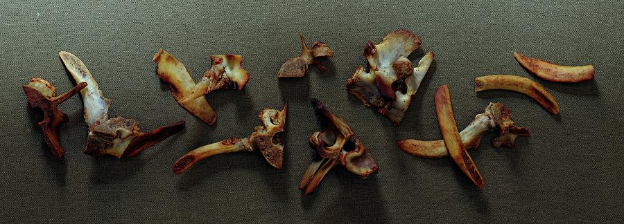 A Cluster Of Sheep Bones Photograph by Romulo Yanes