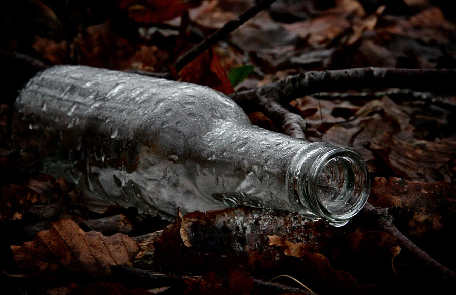 Bottle Photograph - A Cold One by Odd Jeppesen