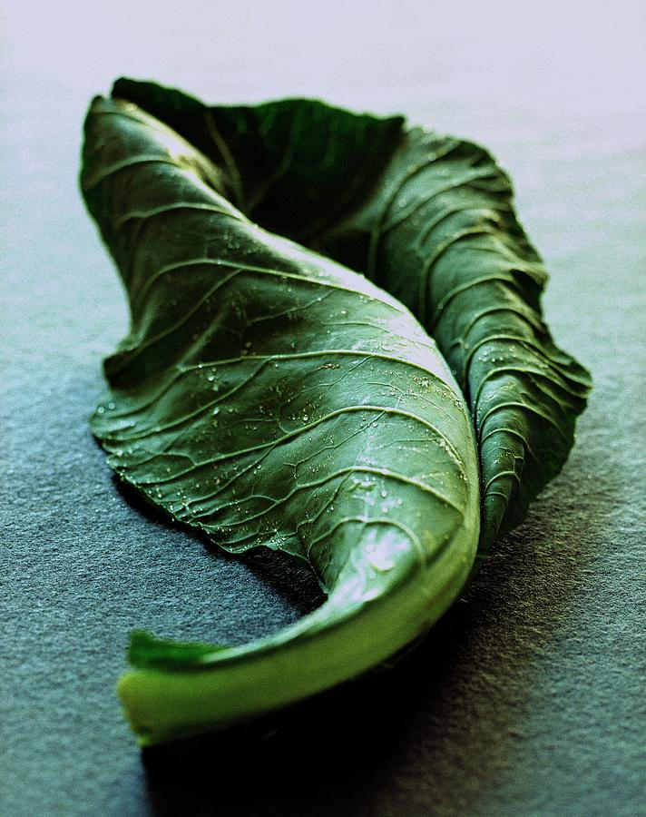 A Collard Leaf Photograph by Romulo Yanes