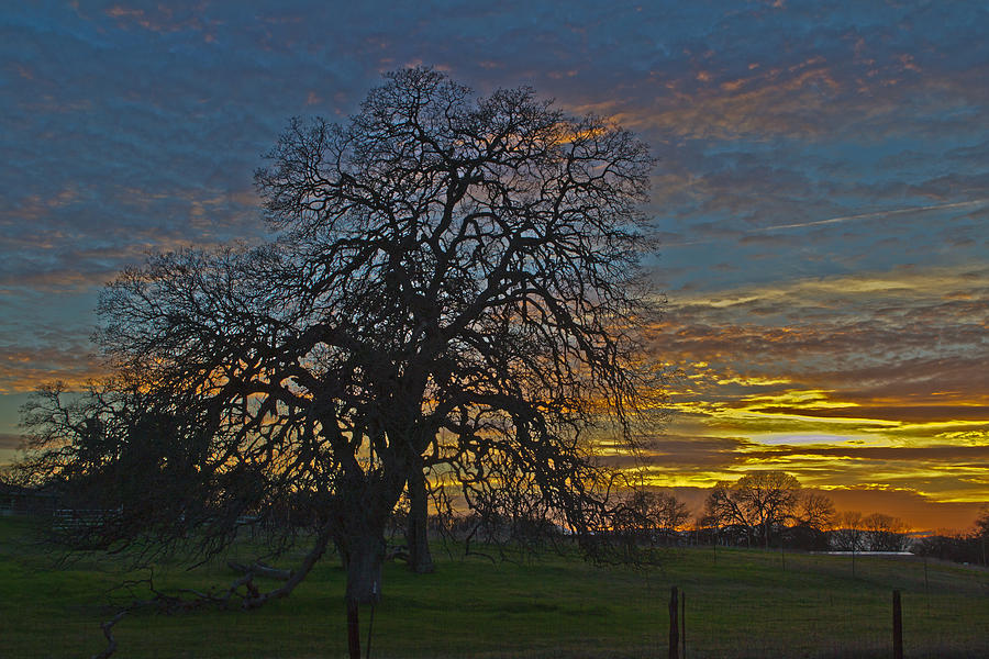 A Country Sunset Photograph by Richard Risely