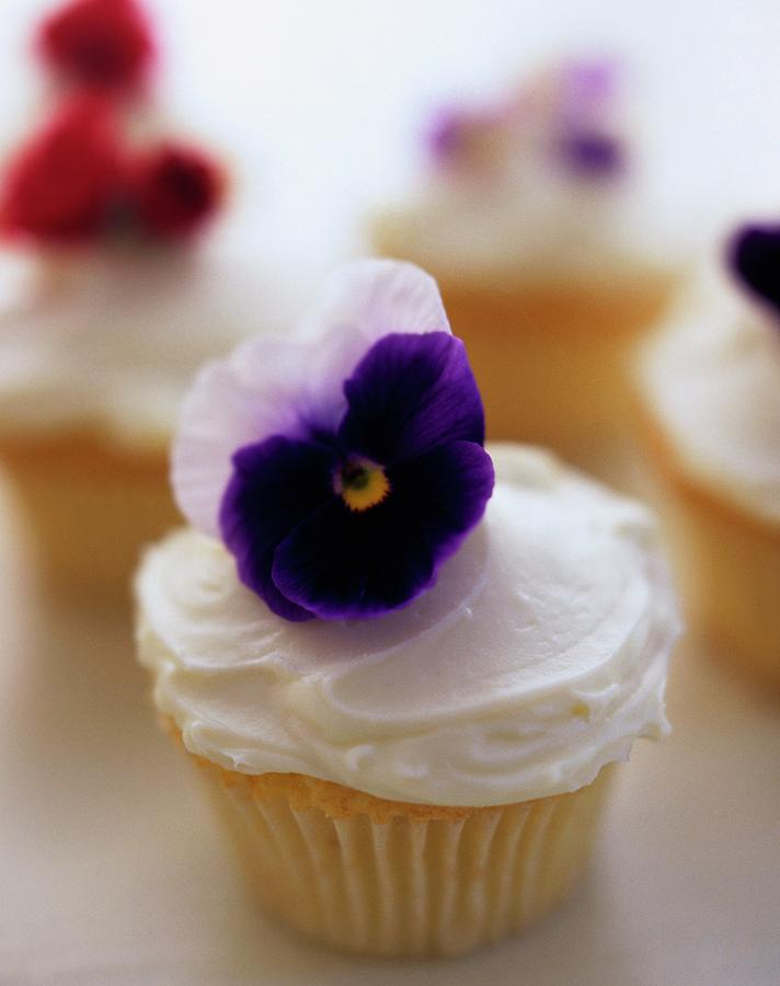 A Cupcake With A Violet On Top Photograph by Romulo Yanes