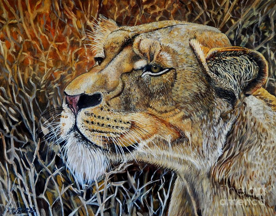 Lion Painting - A Curious Lioness by Caroline Street