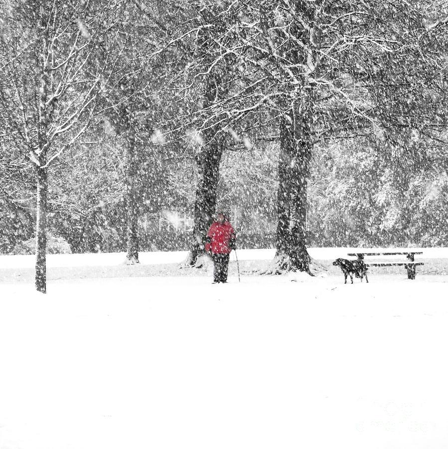 Man Photograph - A Dash Of Red by Karin Ubeleis-Jones