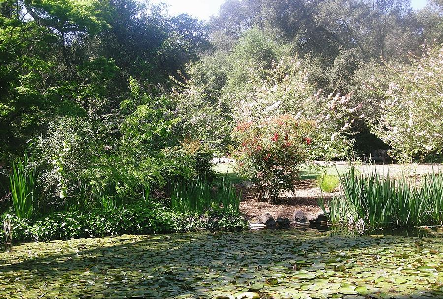 Landscape Photograph - A Day In The Garden by Marian Jenkins