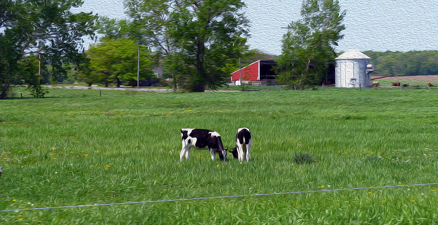 Cows Photograph - A Day In The Life - Digital Painting Effect by Rhonda Barrett