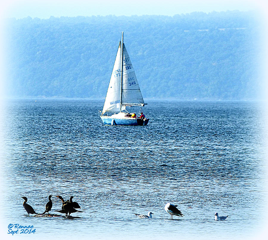 Water Photograph - A Day To Sail by Rennae Christman