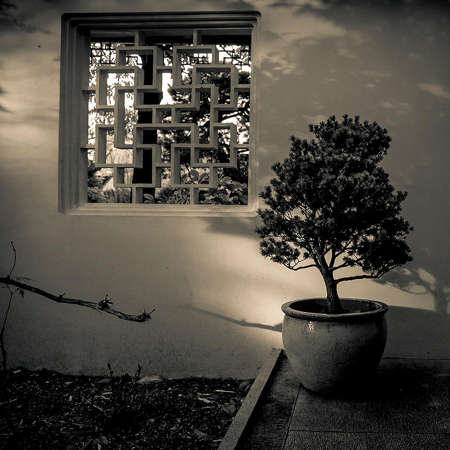 Portland Photograph - A Detail At The Lan Su Chinese Garden by John Magnet Bell