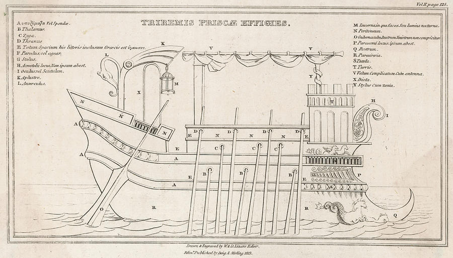 A Diagram Of A Greek Trireme Showing Drawing By Mary Evans