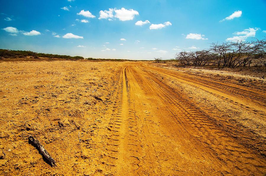 Desert Photograph - A Dirt Road In The Desert by Jess Kraft