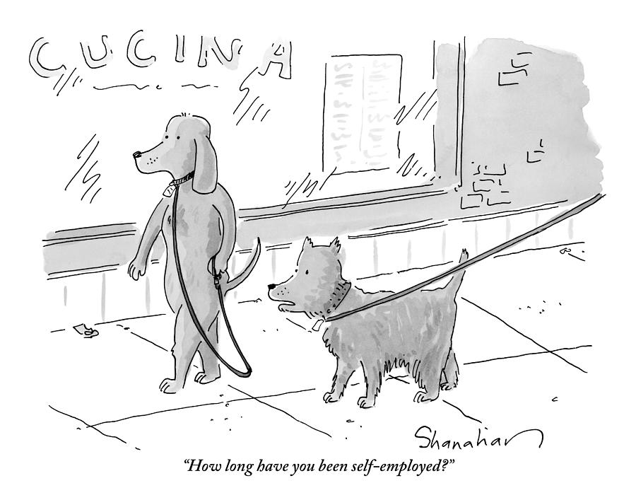 A Dog Being Walked On A Leash Asks A Dog Who Drawing by Danny Shanahan