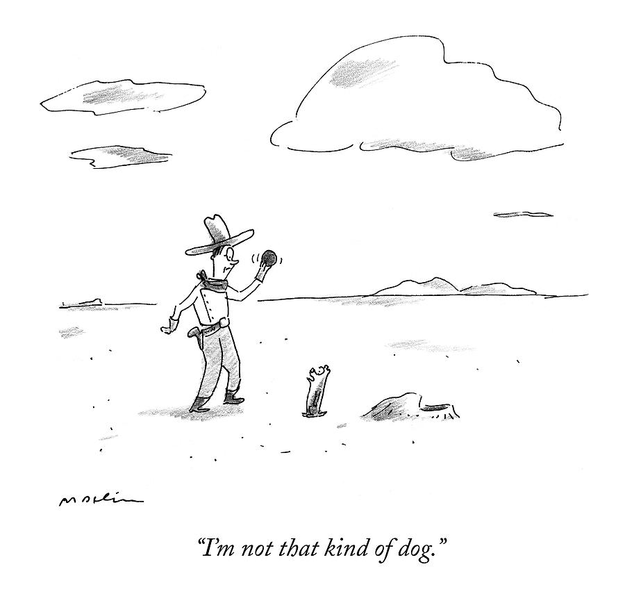 A Dog Refuses To Play Ball With A Cowboy Drawing by Michael Maslin