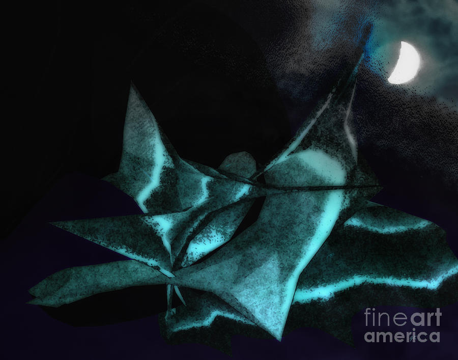 Abstract Photograph - A Dream - Flying To The Moon by Gerlinde Keating - Galleria GK Keating Associates Inc