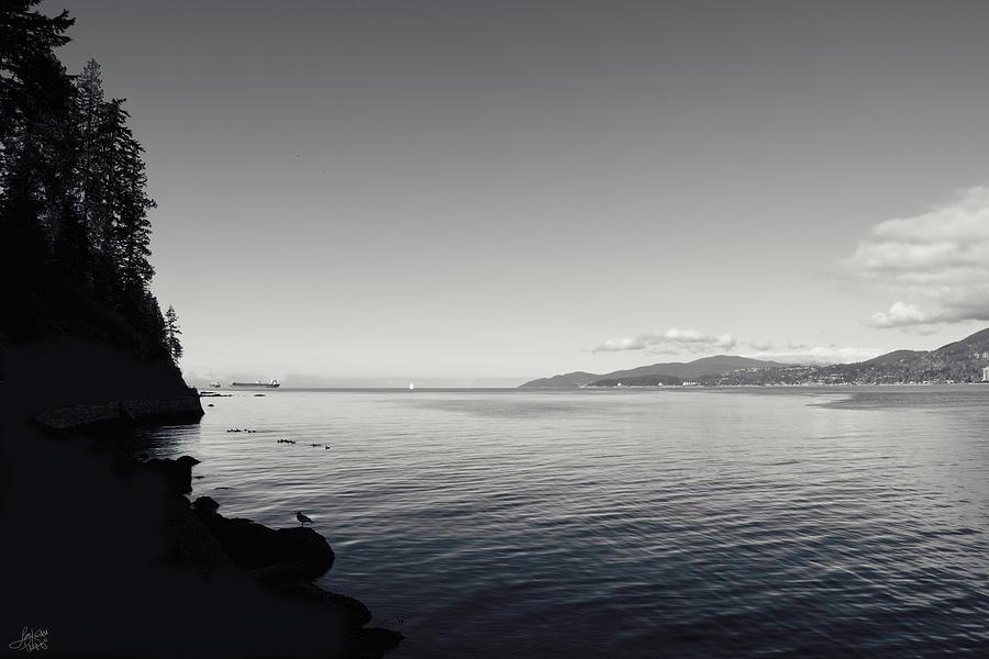 B&w Photograph - A Drop In The Ocean by Lisa Knechtel