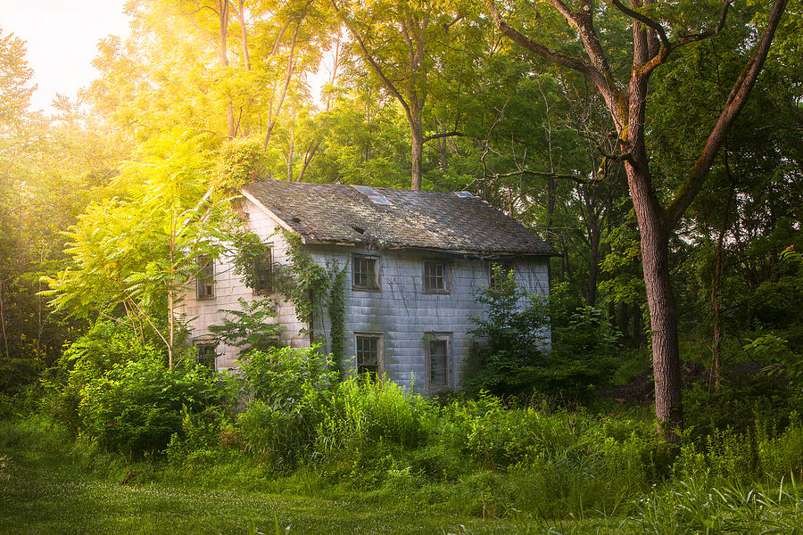 Old House Photograph - A Fading Memory One Summer Morning - Abandoned House In The Woods by Gary Heller