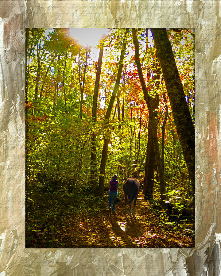 Fall Photograph - A Fall Walk With My Best Friend by Sandi OReilly