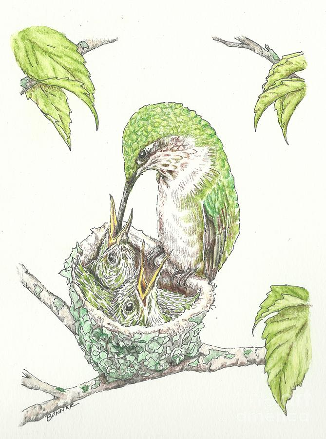 Ruby Throated Hummingbird Painting - A Family Tree by Sue Bonnar