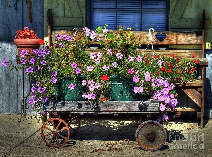 Flowers Photograph - A Flower Wagon by Mel Steinhauer