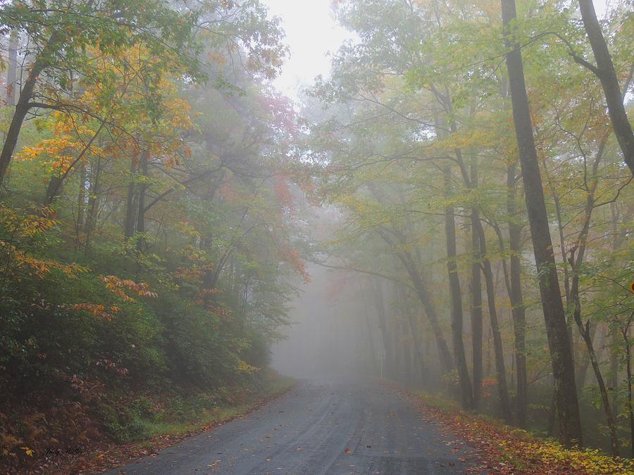 Autumn Photograph - A Foggy Drive by Judy  Waller