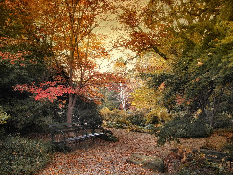 A Formal Garden Photograph