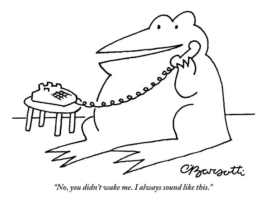 A Frog Answers The Telephone Drawing by Charles Barsotti