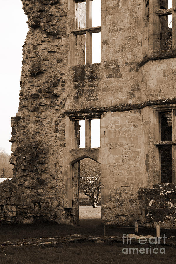 Titchfield Abbey Photograph - A Glimpse Of Titchfield Abbey Orchard by Terri Waters