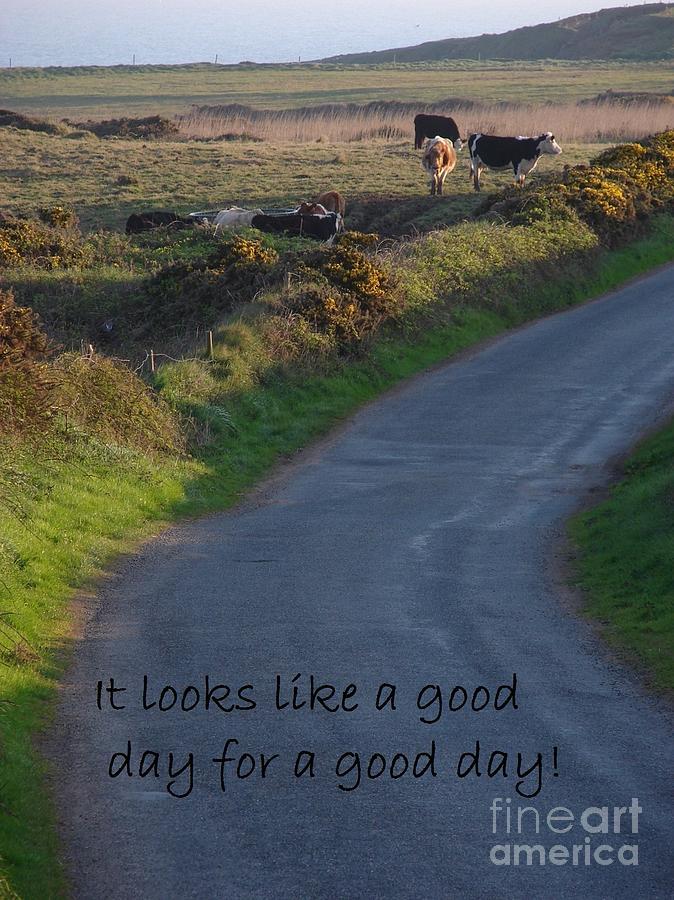 A Good Day Photograph