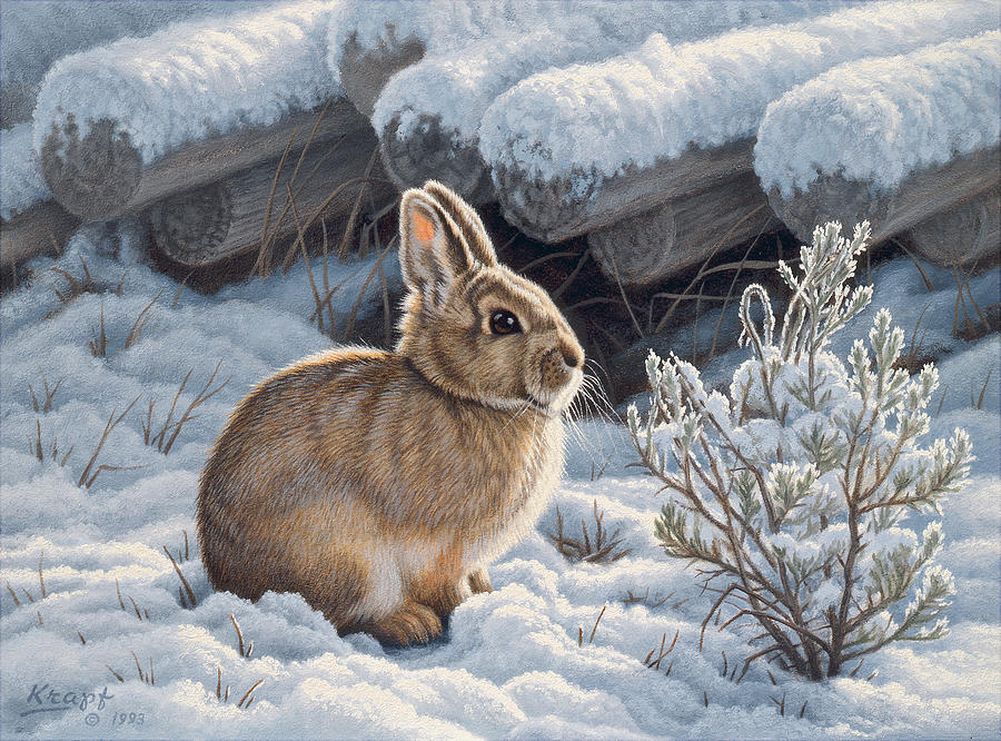 Wildlife Painting - A Good Place - Bunny by Paul Krapf