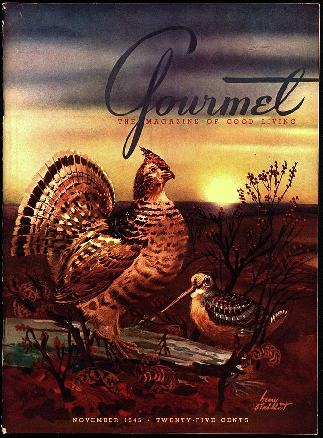 A Gourmet Cover Of A Turkey Photograph by Henry Stahlhut