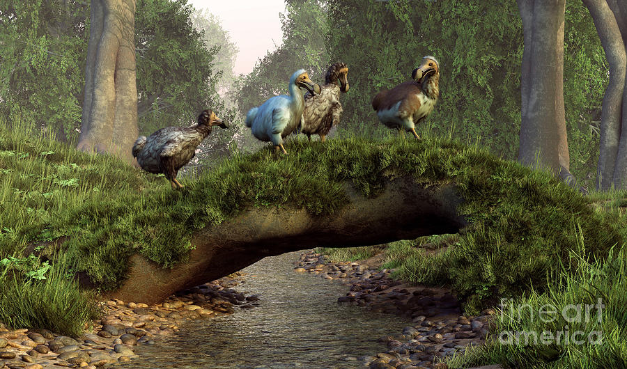 Illustration Digital Art - A Group Of Dodo Birds Crossing by Daniel Eskridge