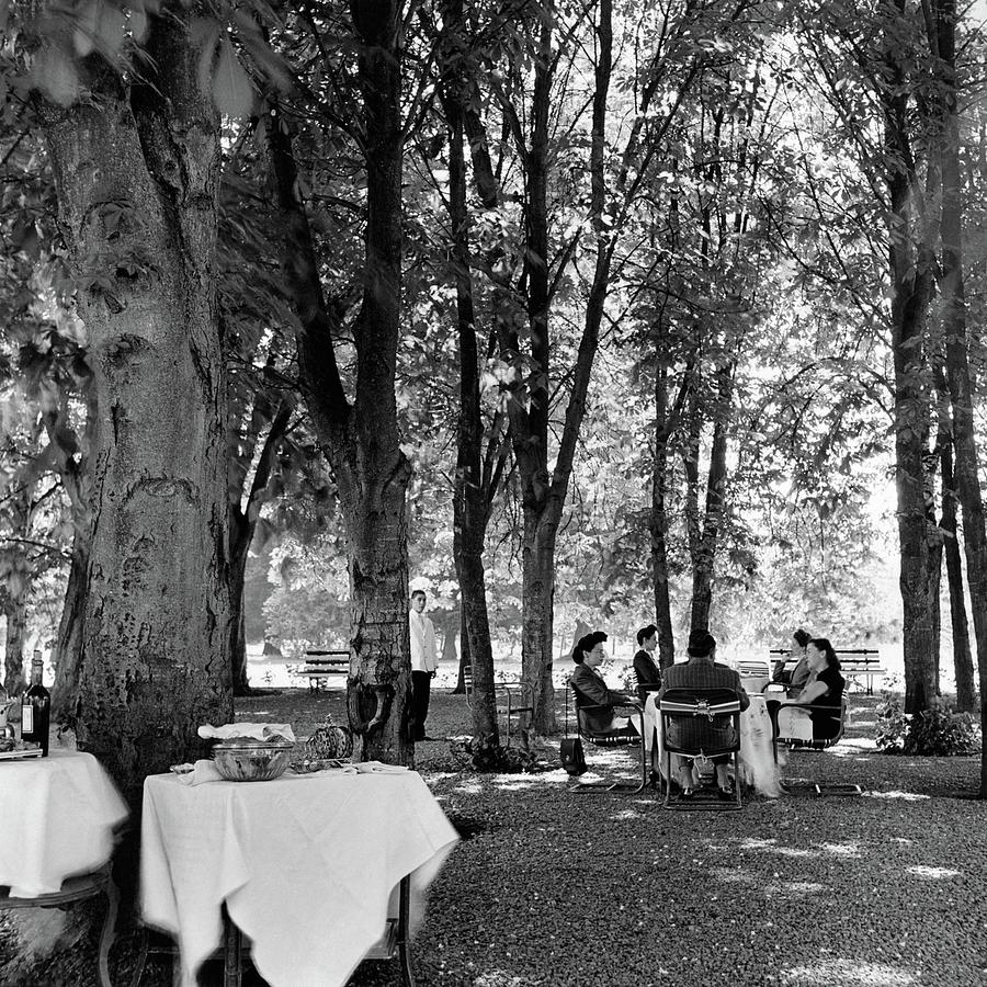 A Group Of People Eating Lunch Under Trees Photograph by Luis Lemus