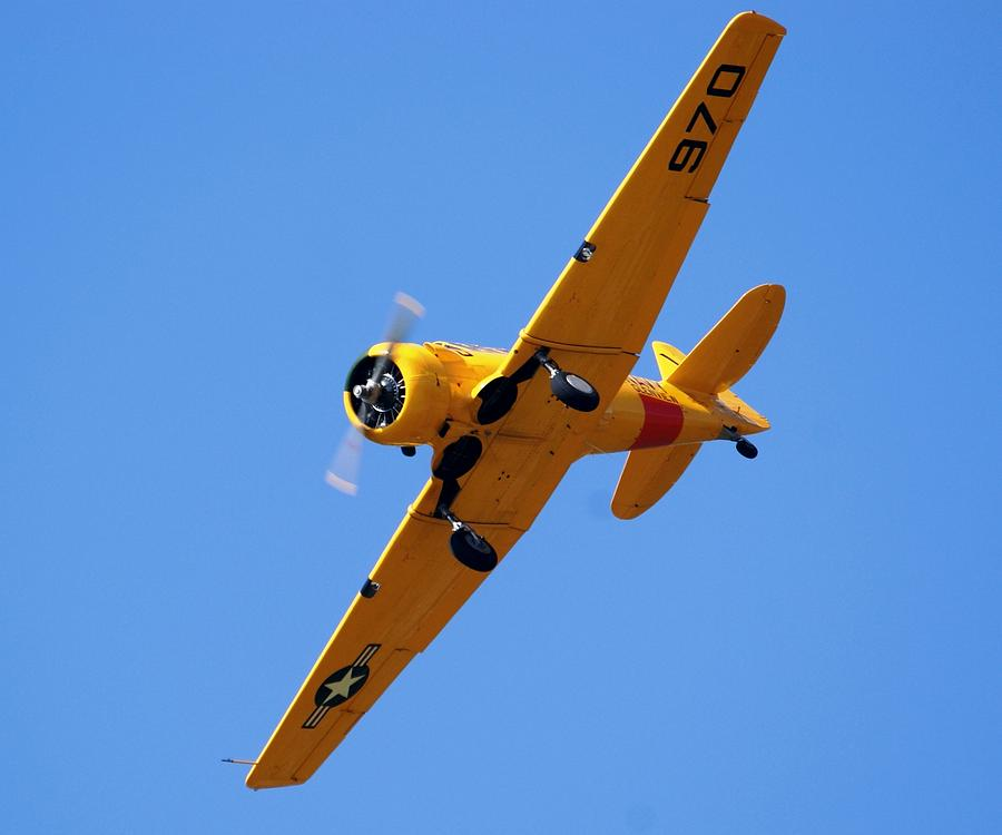 North American Photograph - A Harvard By Any Other Name by Martin Jones