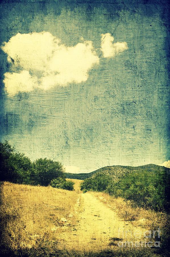 Tree Photograph - A Heart To Follow by Ioanna Papanikolaou