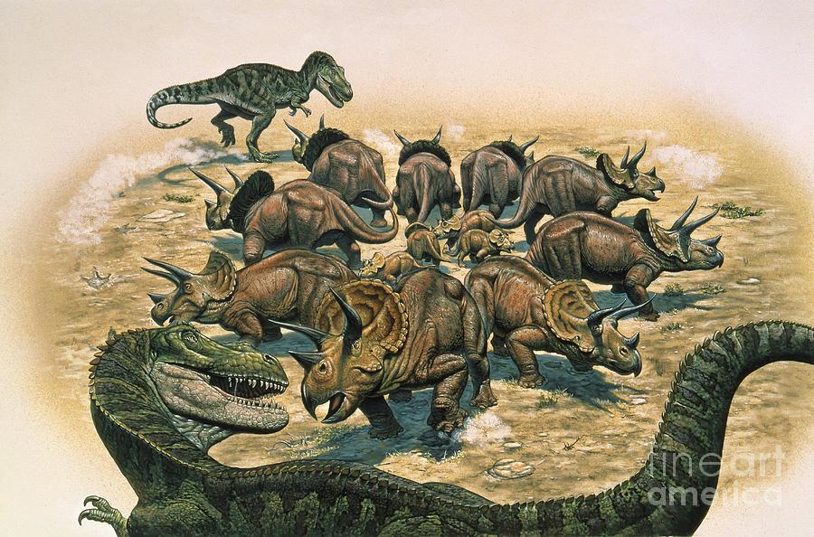 A Herd Of Triceratops Defend Digital Art By Mark Hallett