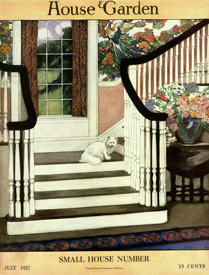 A House And Garden Cover Of A Cat On A Staircase Photograph by Ethel Franklin Betts Baines