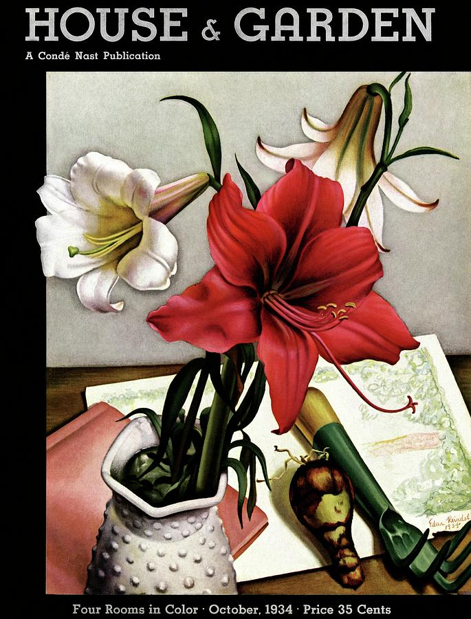 A House And Garden Cover Of Lilies Photograph by Edna Reindel