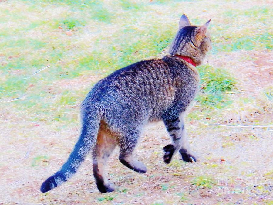 Cat Painting - A Hunting We Will Go by Judy Via-Wolff