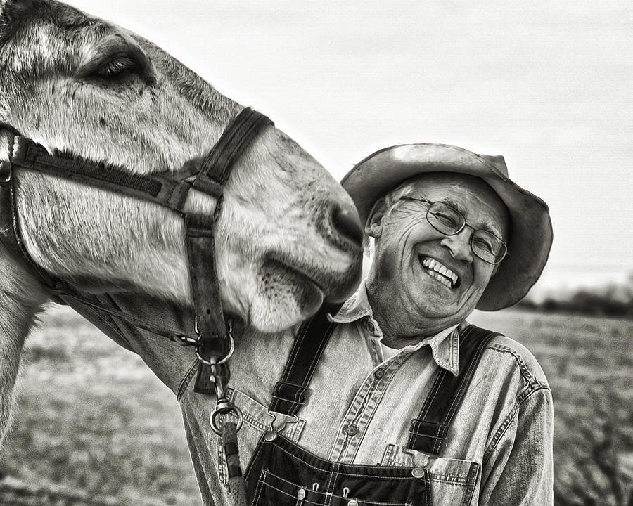 Mule Photograph - A joke between friends by Ron  McGinnis