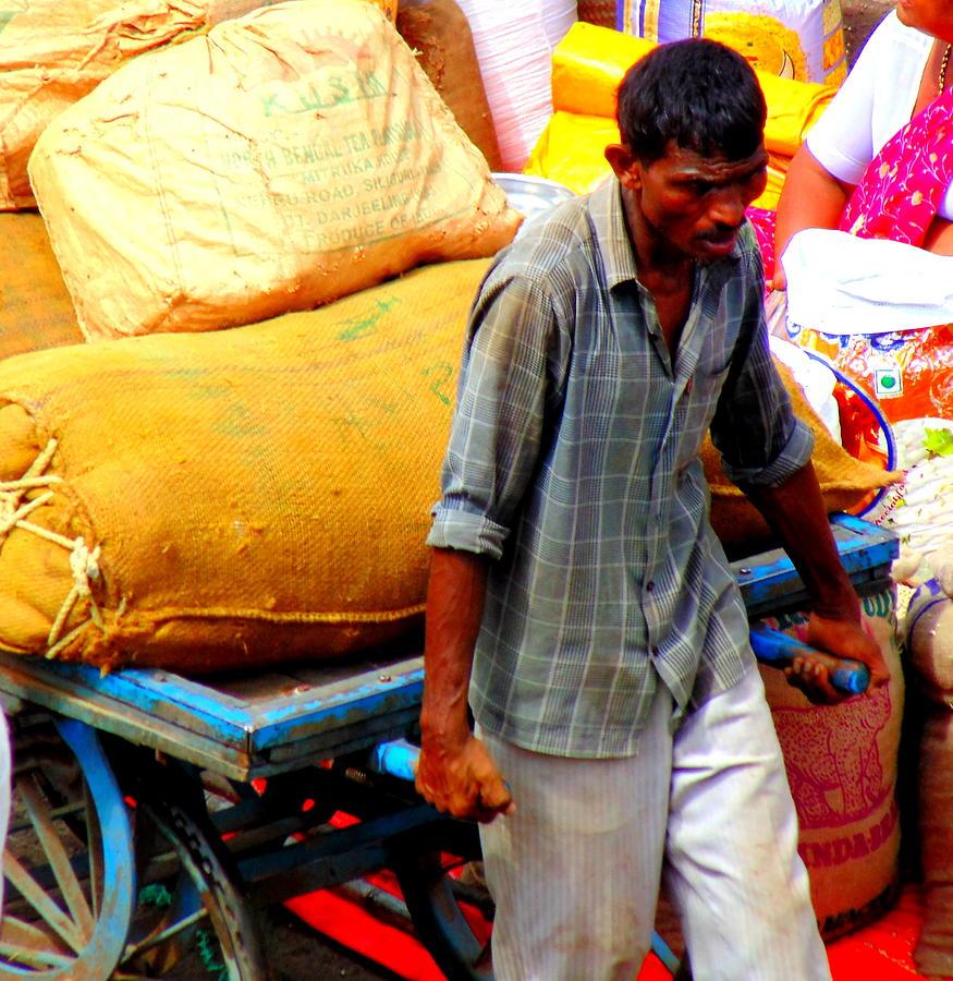 Laborer Photograph - A Laborer by Mannoj Umale