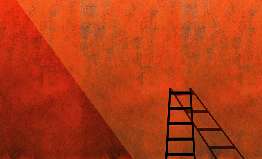 Ladder Photograph - A Ladder And Its Shadow by Inge Schuster