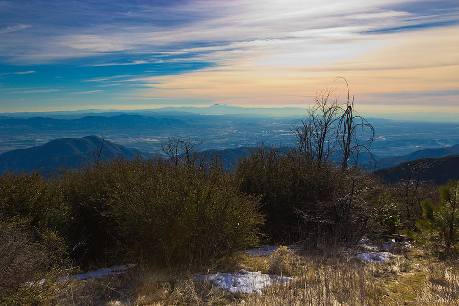 Background Photograph - A Late Winters Afternoon by Heidi Smith