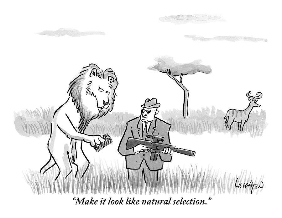 Cumulative Selection Vs Natural Selection