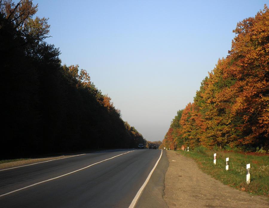 Road Photograph - A Long Road Home by Taras Humeniuk