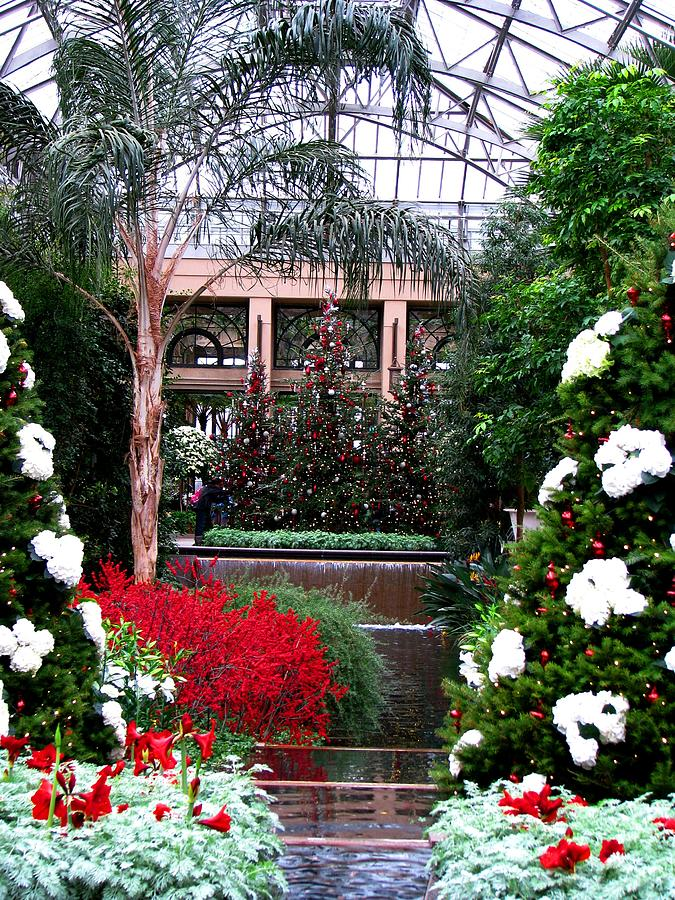 A Longwood Gardens Christmas Photograph By Angela Davies