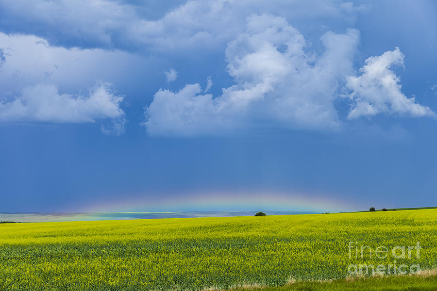 Alberta Photograph - A Low Altitude Rainbow Visible by Alan Dyer