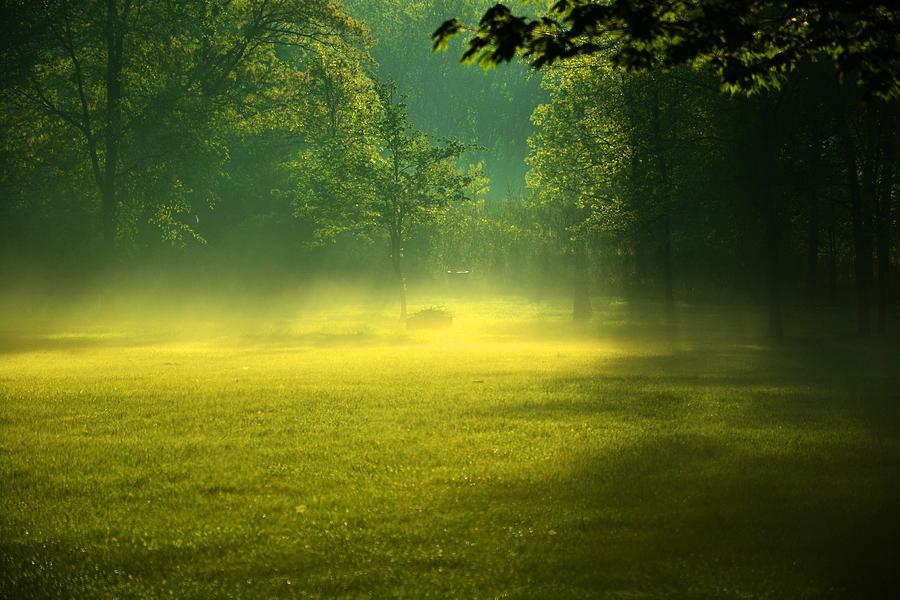 Fog Photograph - A Magical Place by Valarie Davis