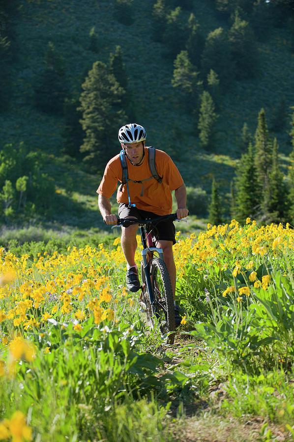 Adventure Photograph - A Man Rides His Mountain Bike by Doug Marshall