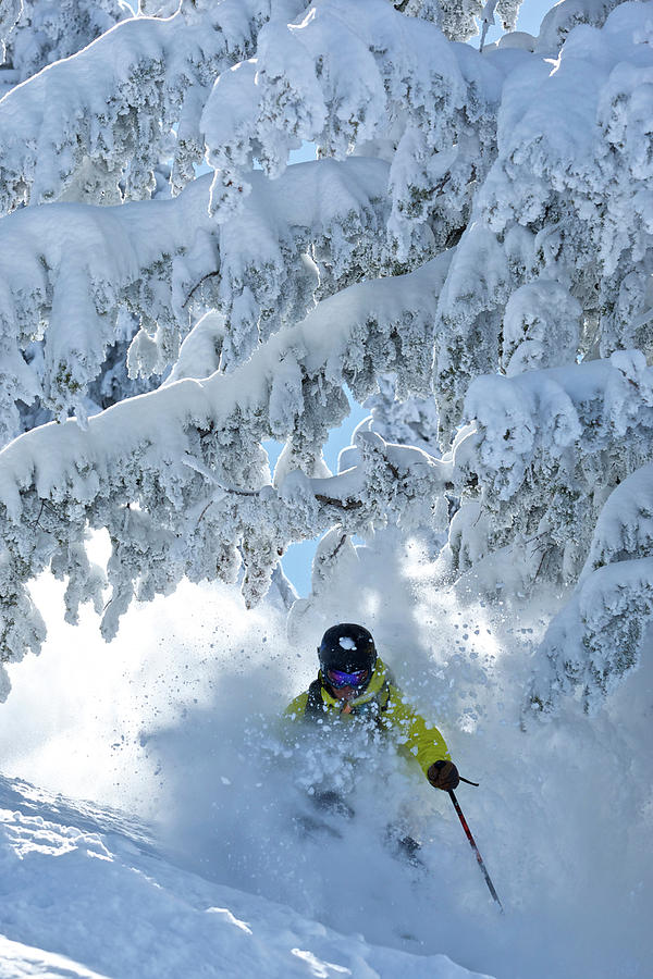 Adult Photograph - A Man Skis In Wyoming by Derek DiLuzio