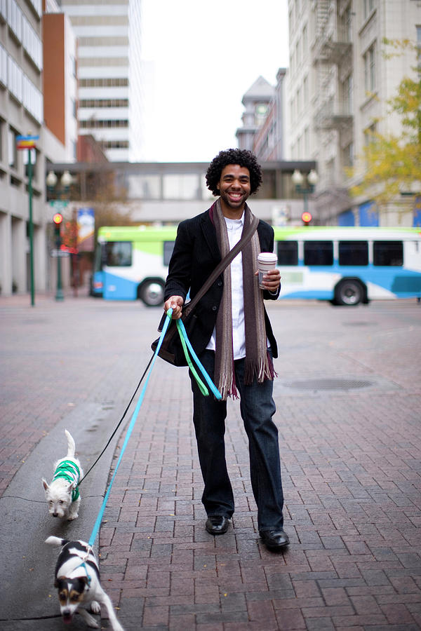 A Man Walking His Dogs In The City