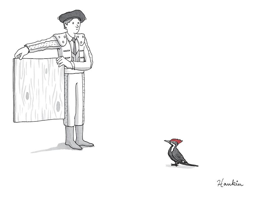 A Matador Provokes A Red-headed Woodpecker Drawing by Charlie Hankin